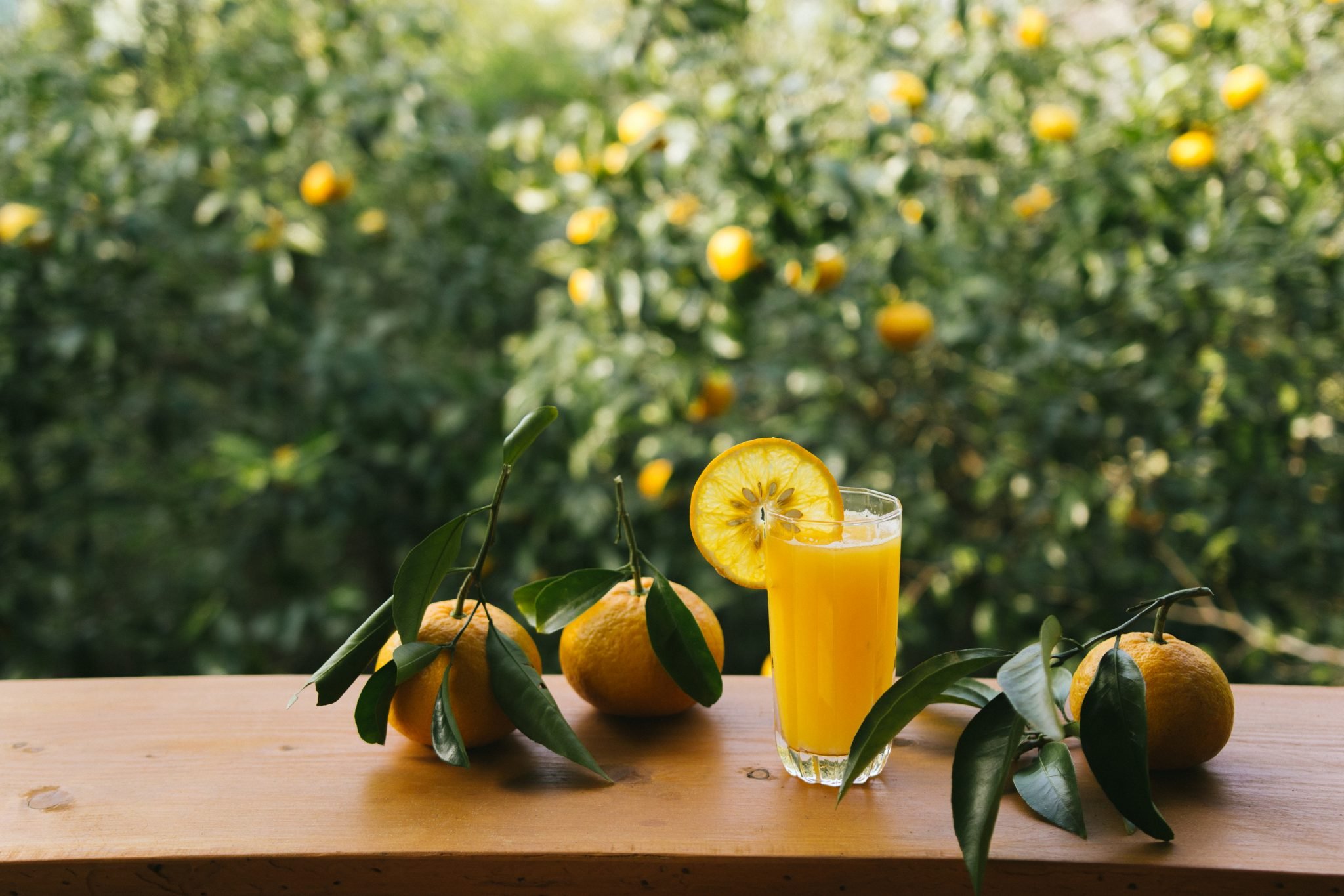 Freshly squeezed orange juice at Retreat wabi-sabi